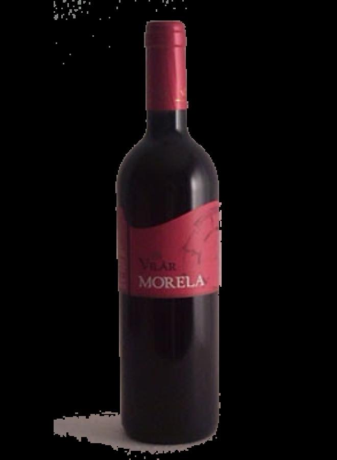 Morela di Villar. Rosso Vallagarina